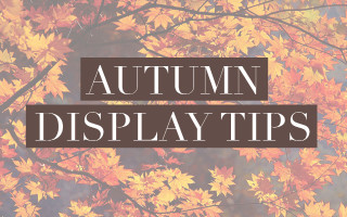 <br>Autumn Display Tips